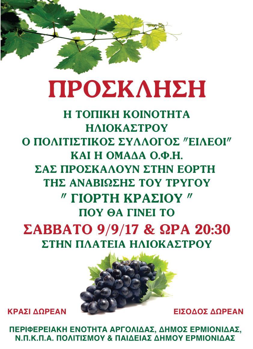 Afisa-Trigos-Iliokastro-17 (1) (3)